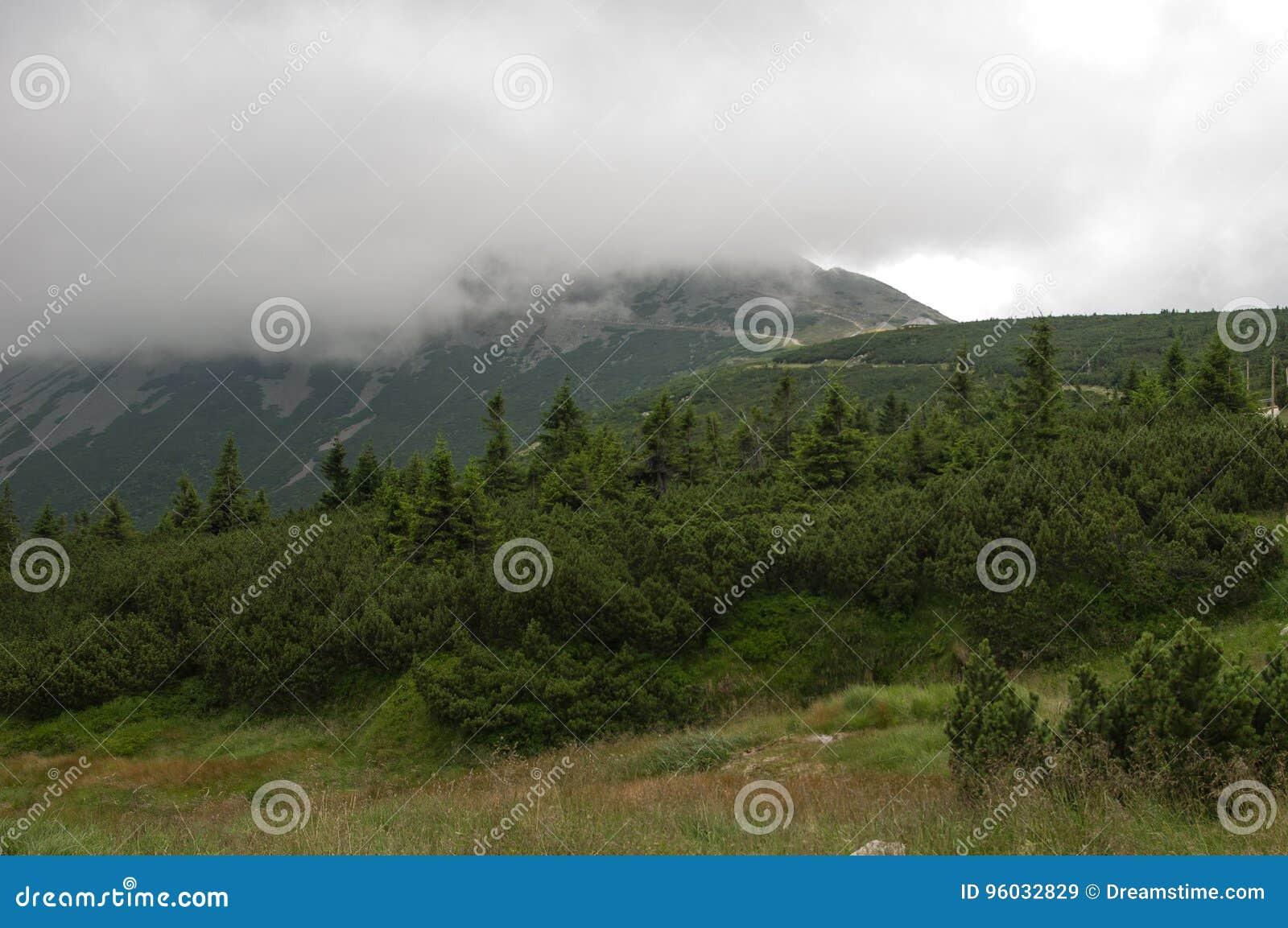 Widok na ÅšnieÅ ¼ ka, Gigantyczne góry, Polska