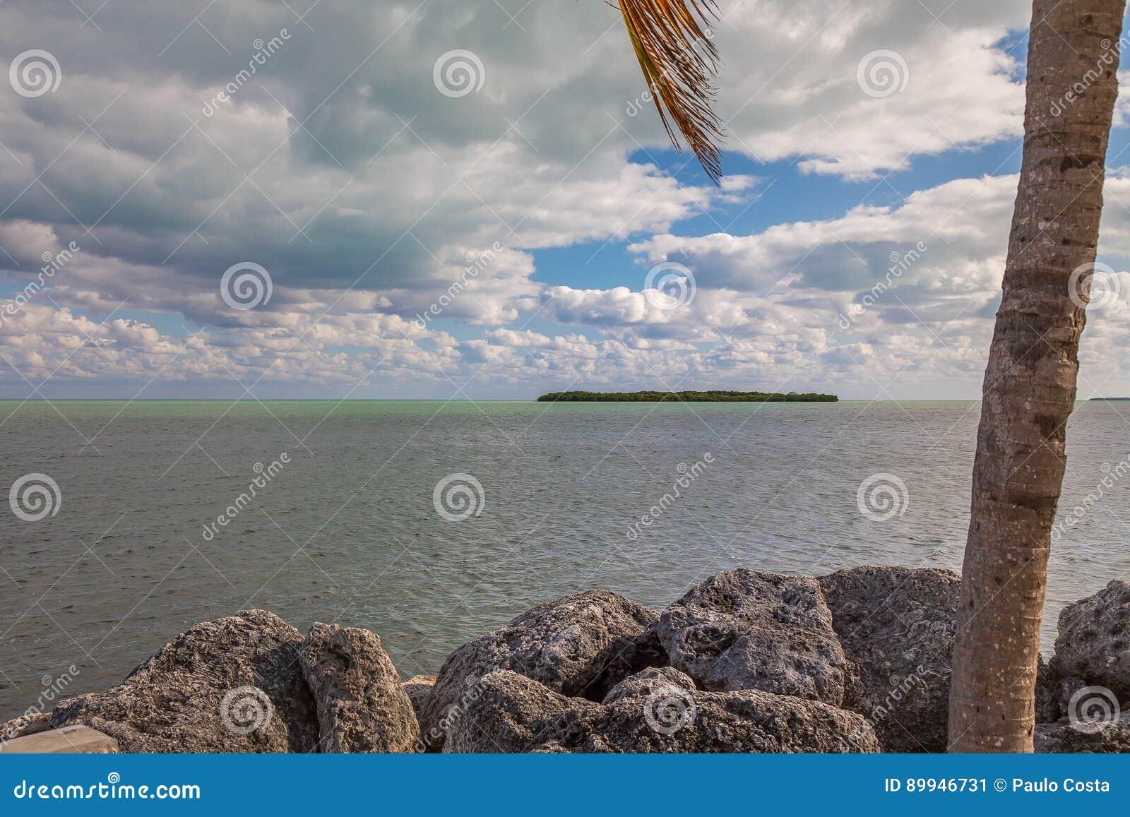 Widok Na Ocean Z drzewkami palmowymi, skały i Piękne chmury