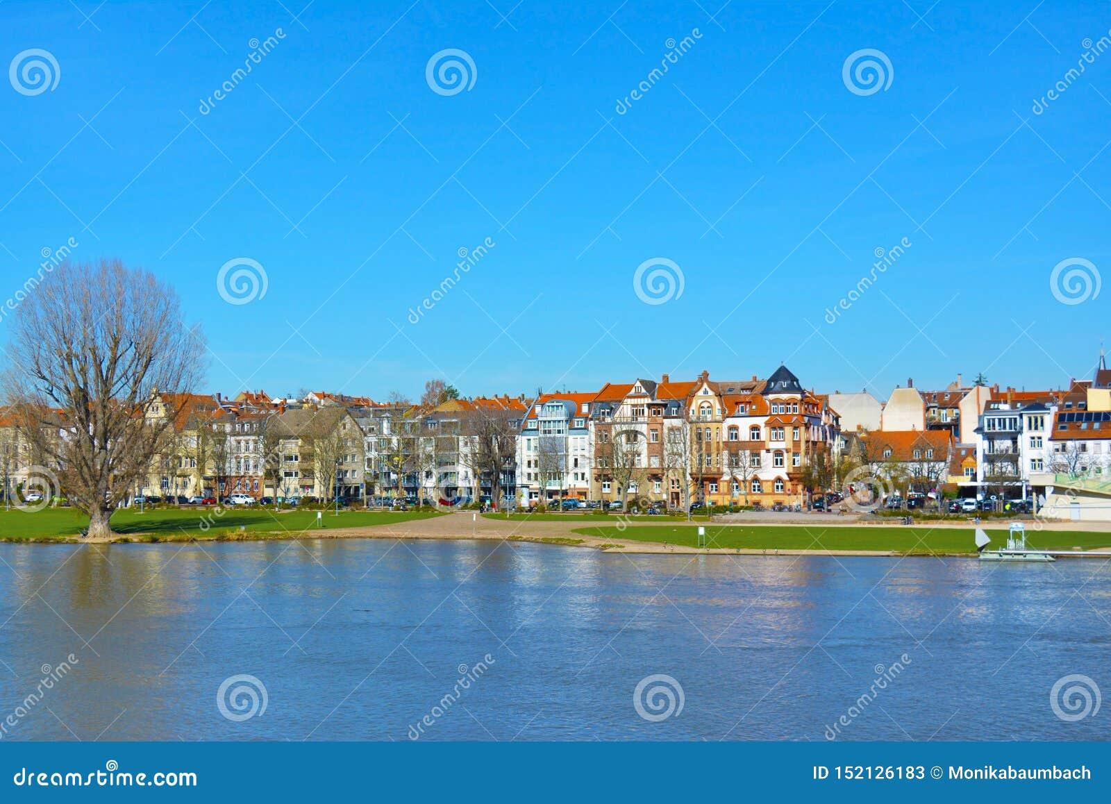 Widok nad niskim Neckar brzeg rzekim z dużą łąką dzwonił «Neckarwiese jako popularny miejsce spotkania dla ludzi w wiośnie i leci