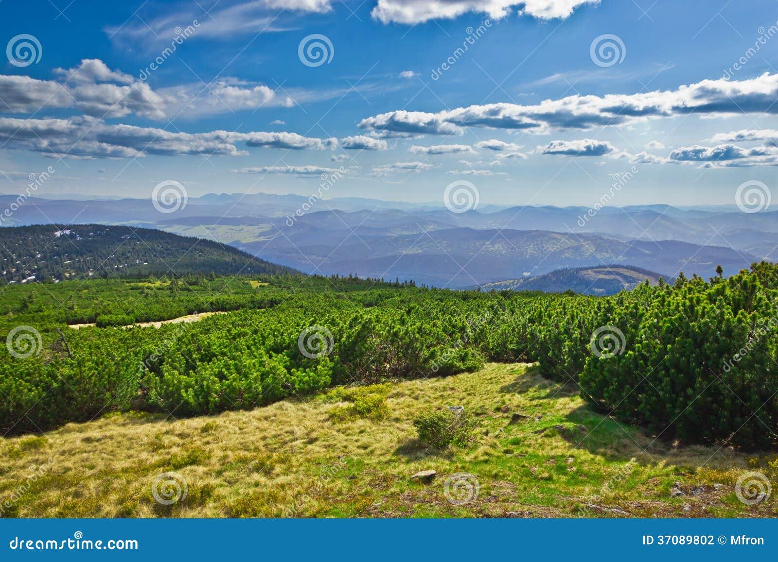 Download Widok Od śladu Pilsko Szczyt Od Beskidy Gór Zdjęcie Stock - Obraz złożonej z sceneria, trawy: 37089802