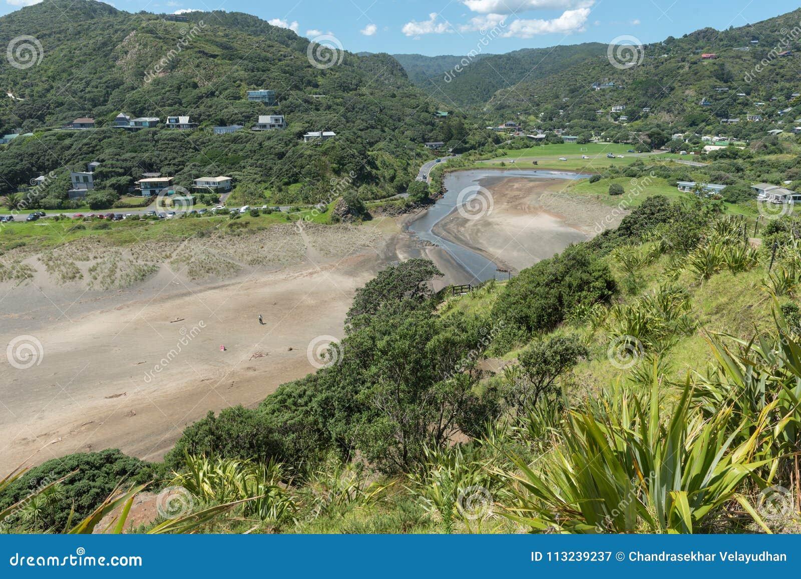 Widok Piha plaża od skłonów lew skała Nowa Zelandia