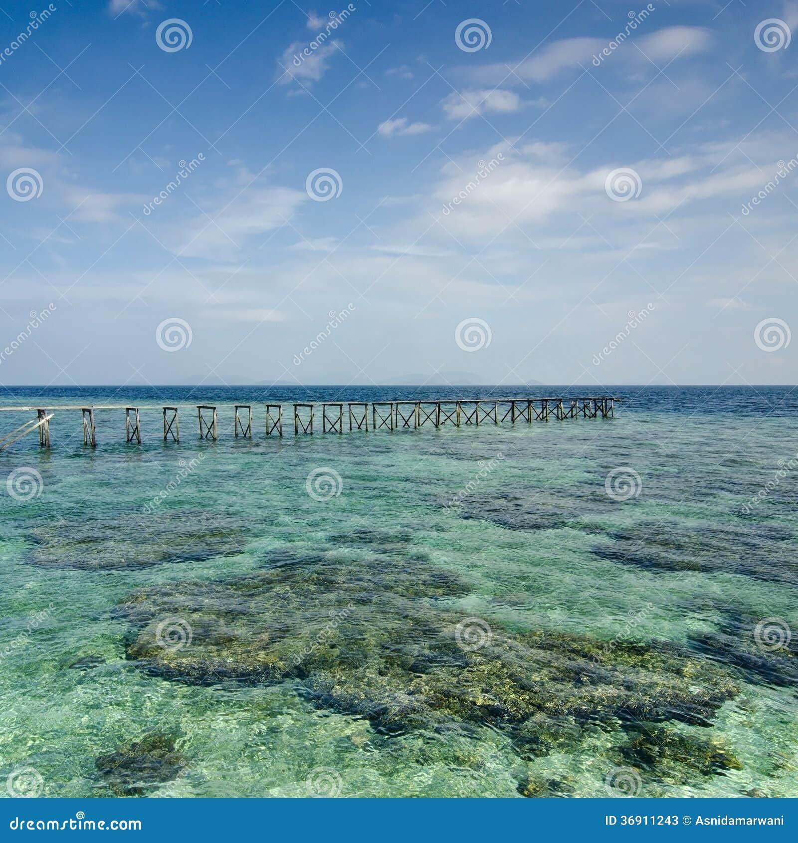 Widok stary łamający jetty podczas słonecznego dnia z koralem s i zielenią