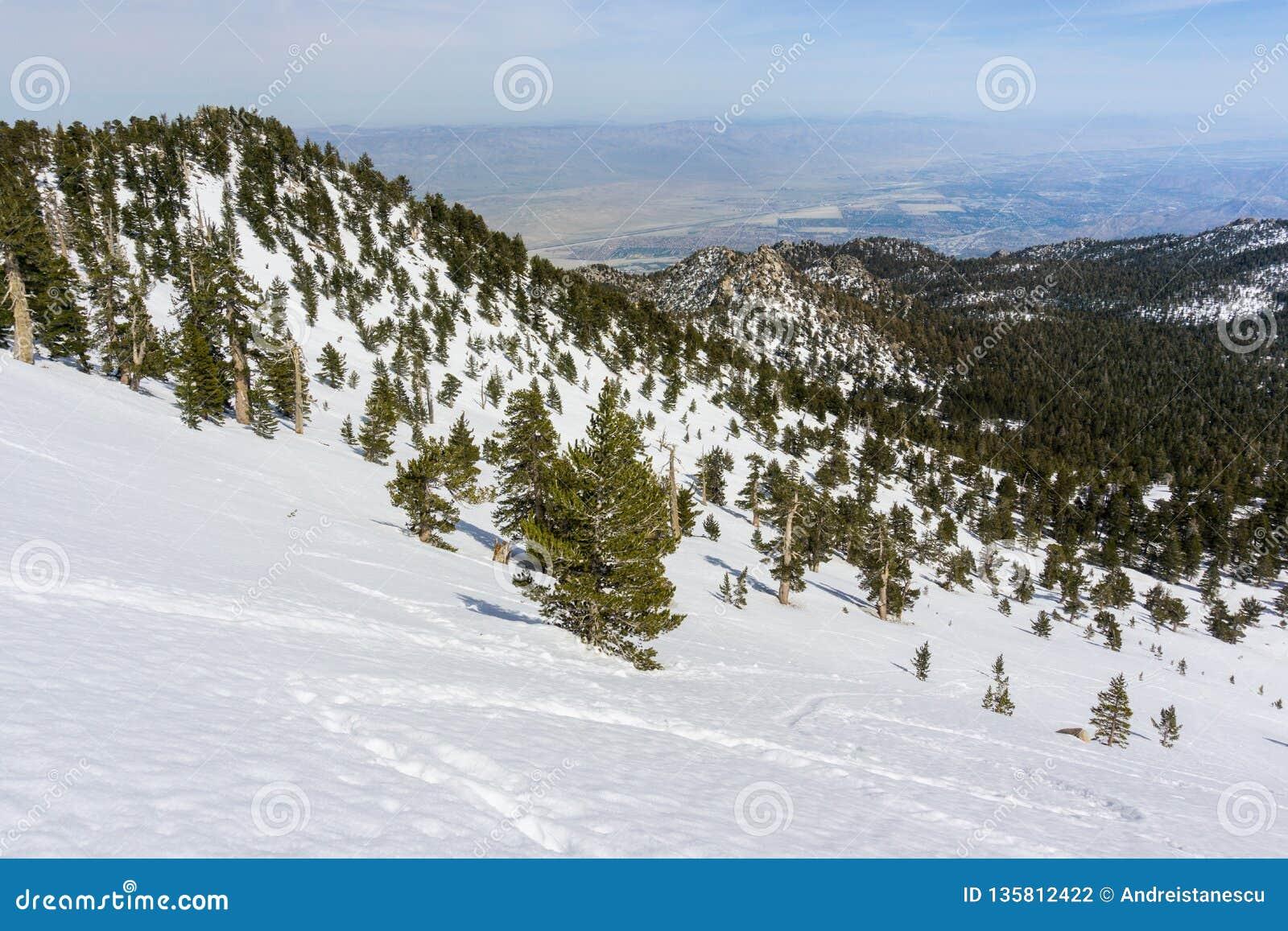 Widok w kierunku palm springs i Coachella doliny od góry San Jacinto stanu parka, Kalifornia