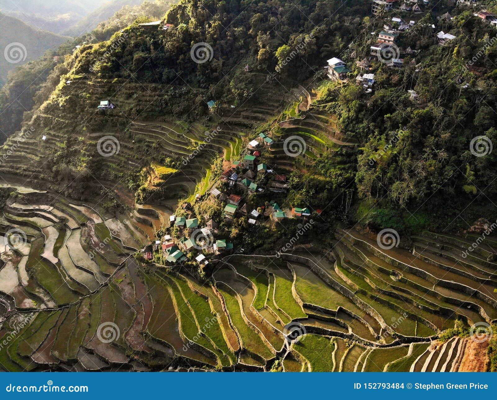 Widok Z Lotu Ptaka - Batad Rice tarasy - Filipiny