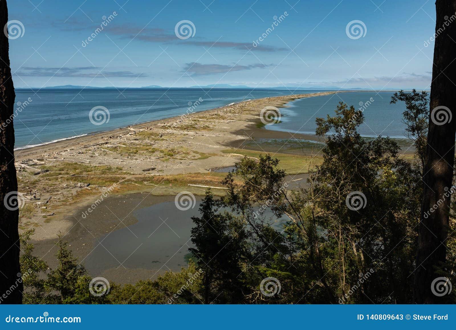 Widok za Dungeness mierzei zakrywającej z driftwood na północnym wybrzeżu Olimpijski półwysep w Waszyngton wzdłuż