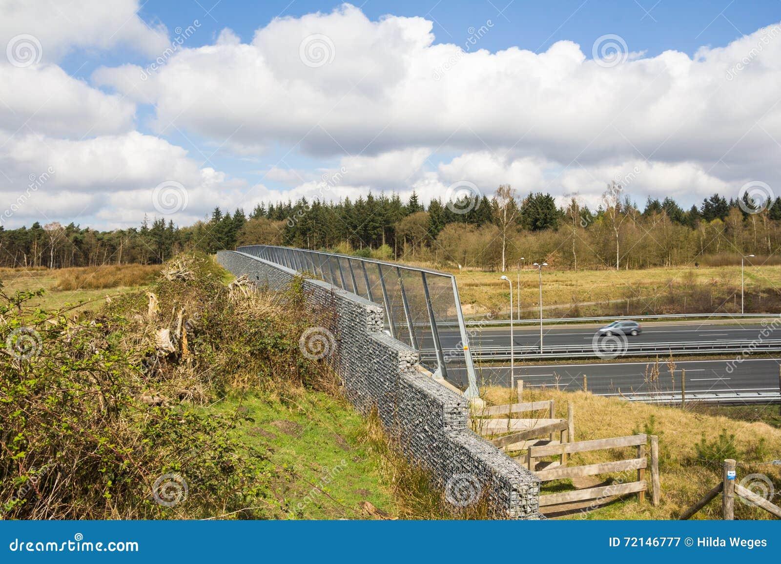 Widok zwierzęcia lub przyrody wiadukt krzyżuje autostradę w