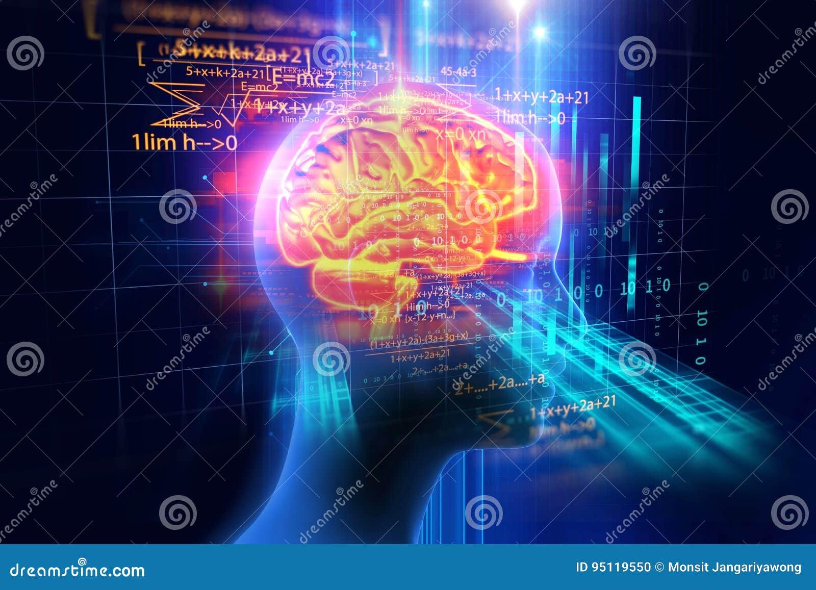 Wiedergabe 3d Des Menschlichen Gehirns Auf ...
