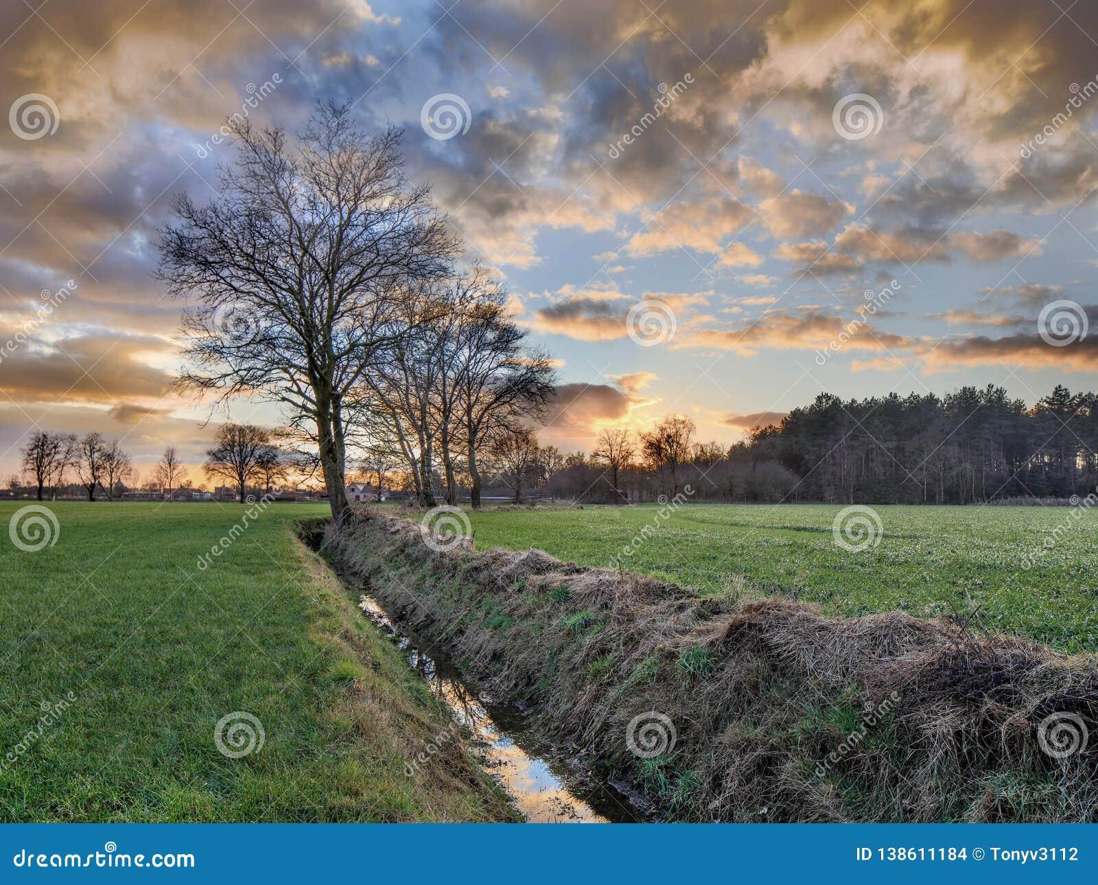 Wiejska sceneria, pole z drzewami blisko przykopu i kolorowy zmierzch z dramatycznymi chmurami, Weelde, Belgia