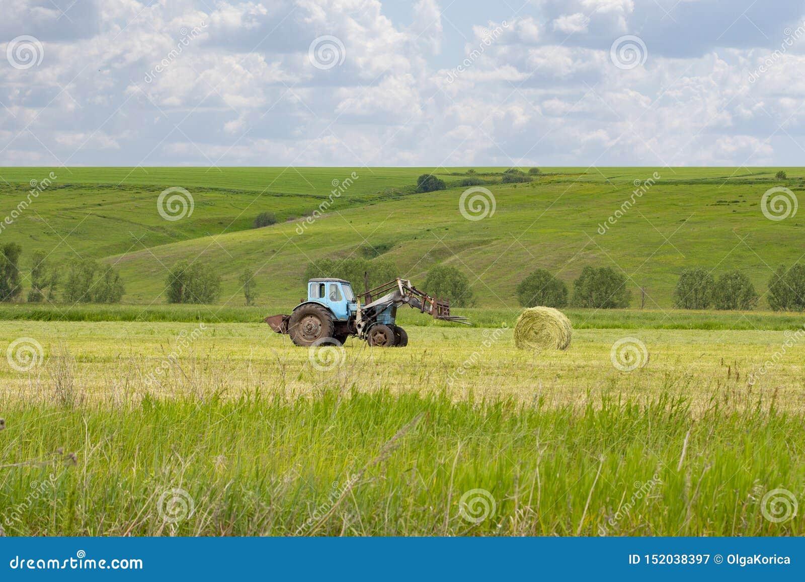 Wiejski życie zbiera snop siano na zielonej łące, wiejski ciągnik Round siana rolka, zwierzęcia domowego jedzenie, siano na gospo