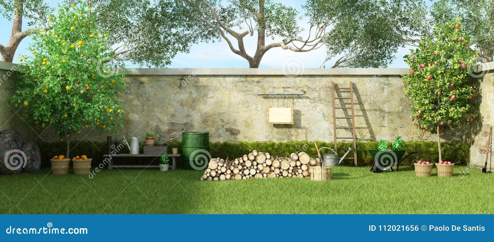 Wiejski ogród w słonecznym dniu
