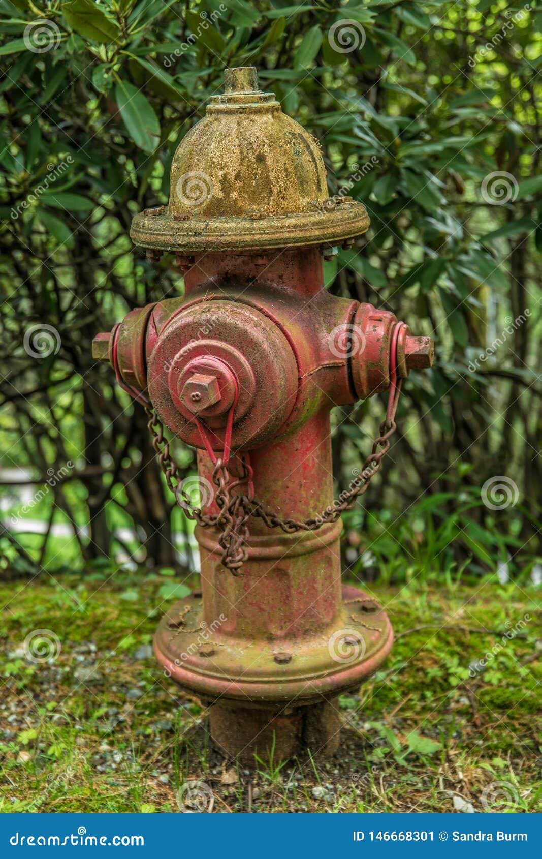 Wiejskiego pobocza stary pożarniczy hydrant