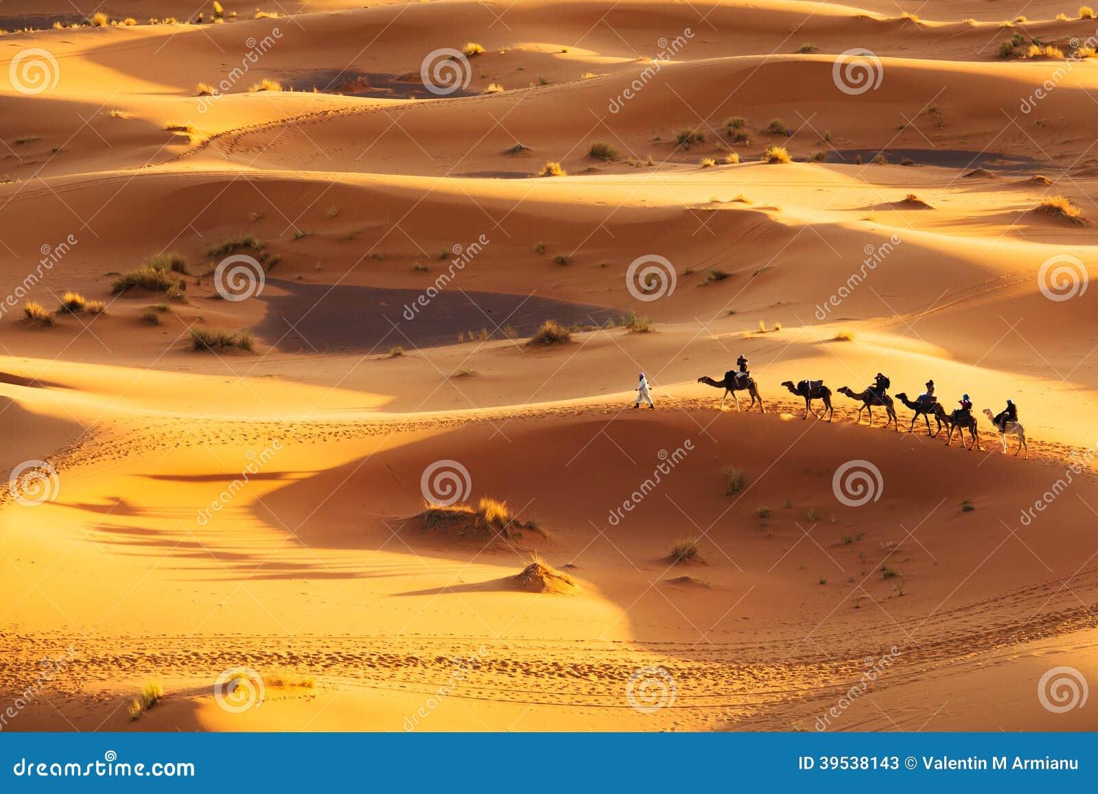 Wielbłądzia karawana
