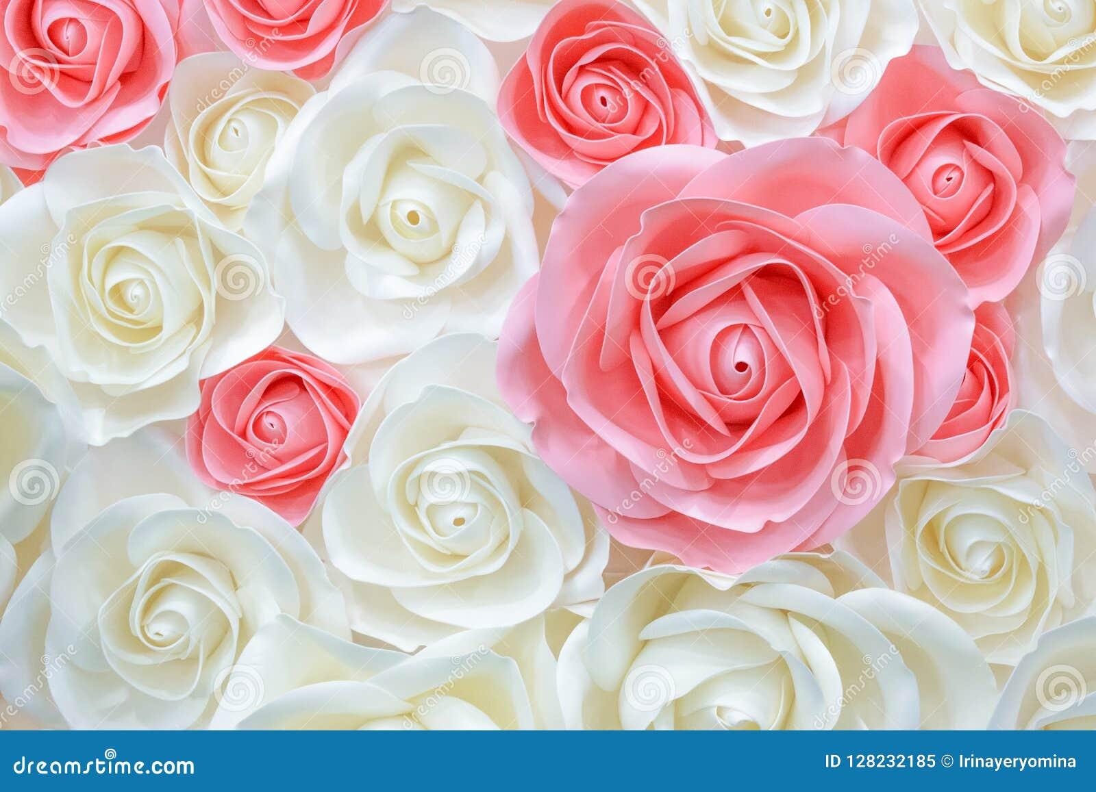 Wielcy Gigantyczni Papierowi kwiaty Duże menchie, biel, beż róża, peonia robić od papieru Pastelu tła papierowego wzoru uroczy st