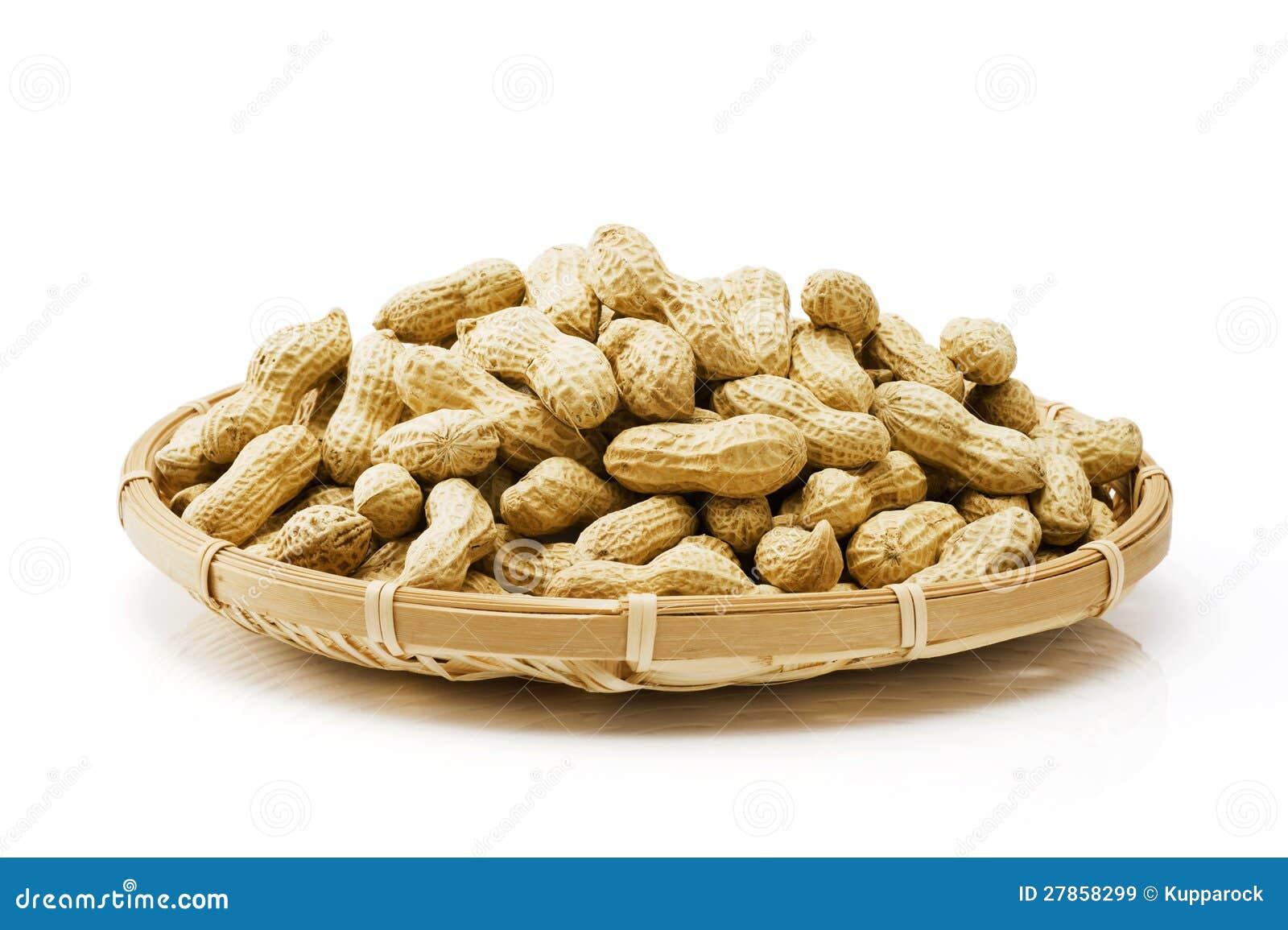 Wiele arachidy