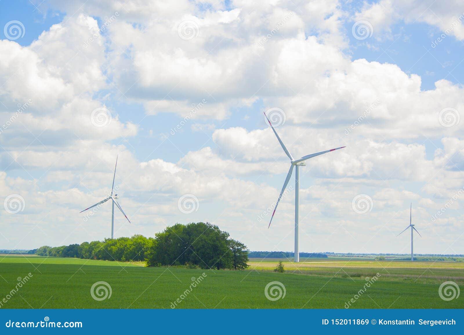 Wiele duzi i wysocy wiatraczki przy słonecznym dniem na zielenieją pole Alternatywnej energii generatory Wiatraczki przy wsch?d s