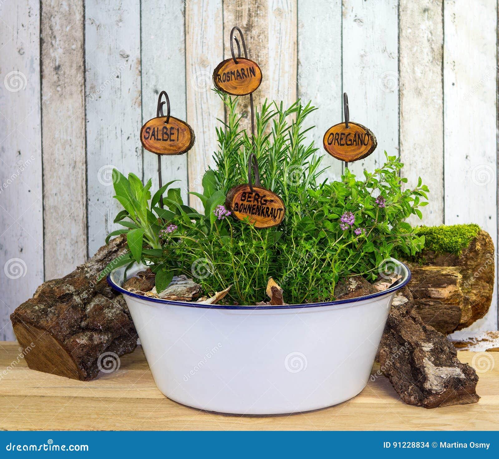 Wiele ziele w starym obmycie pucharze