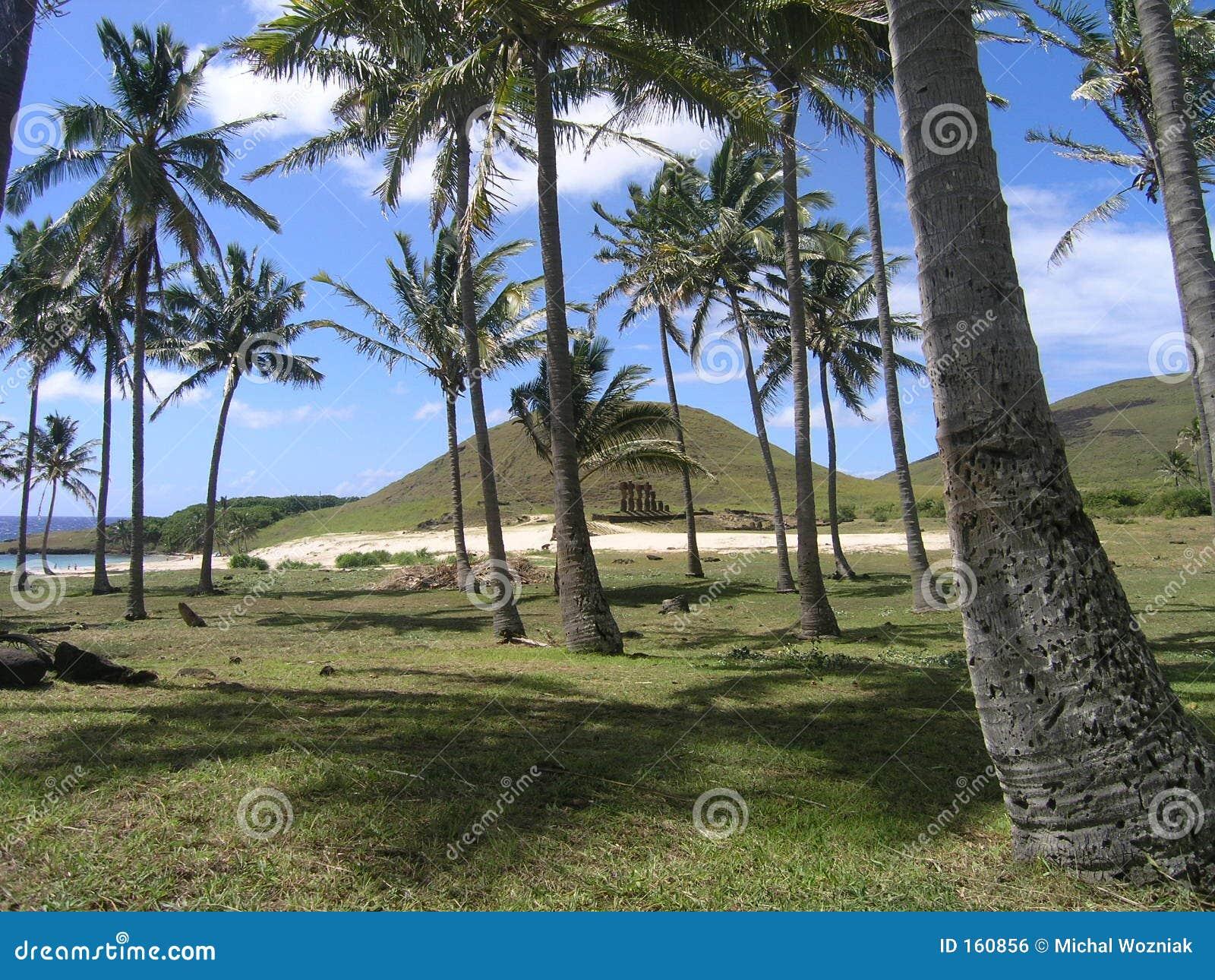 Wielkanoc anakena plażowa wyspę.