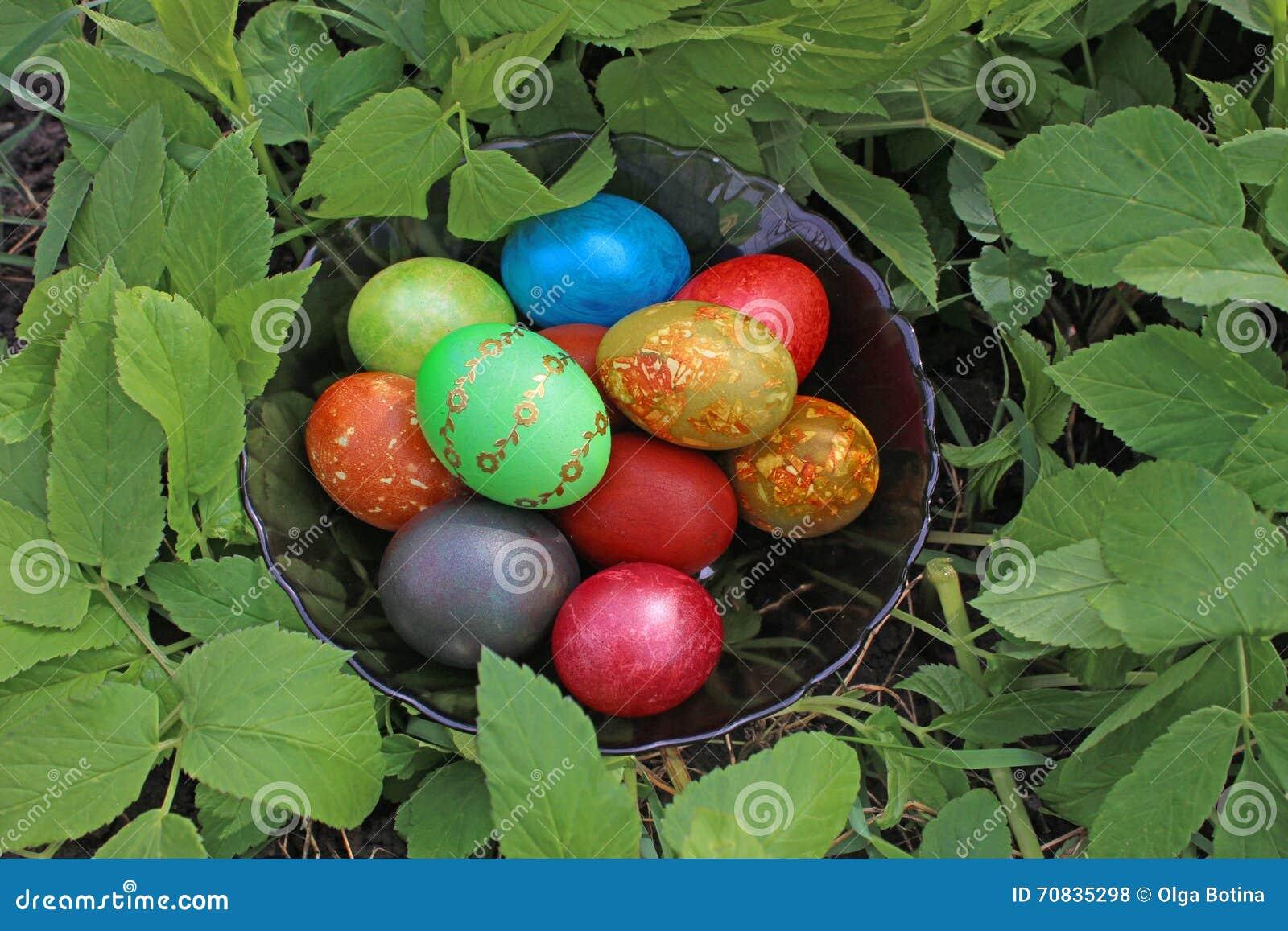 Wielkanoc jaj trawa zieleni