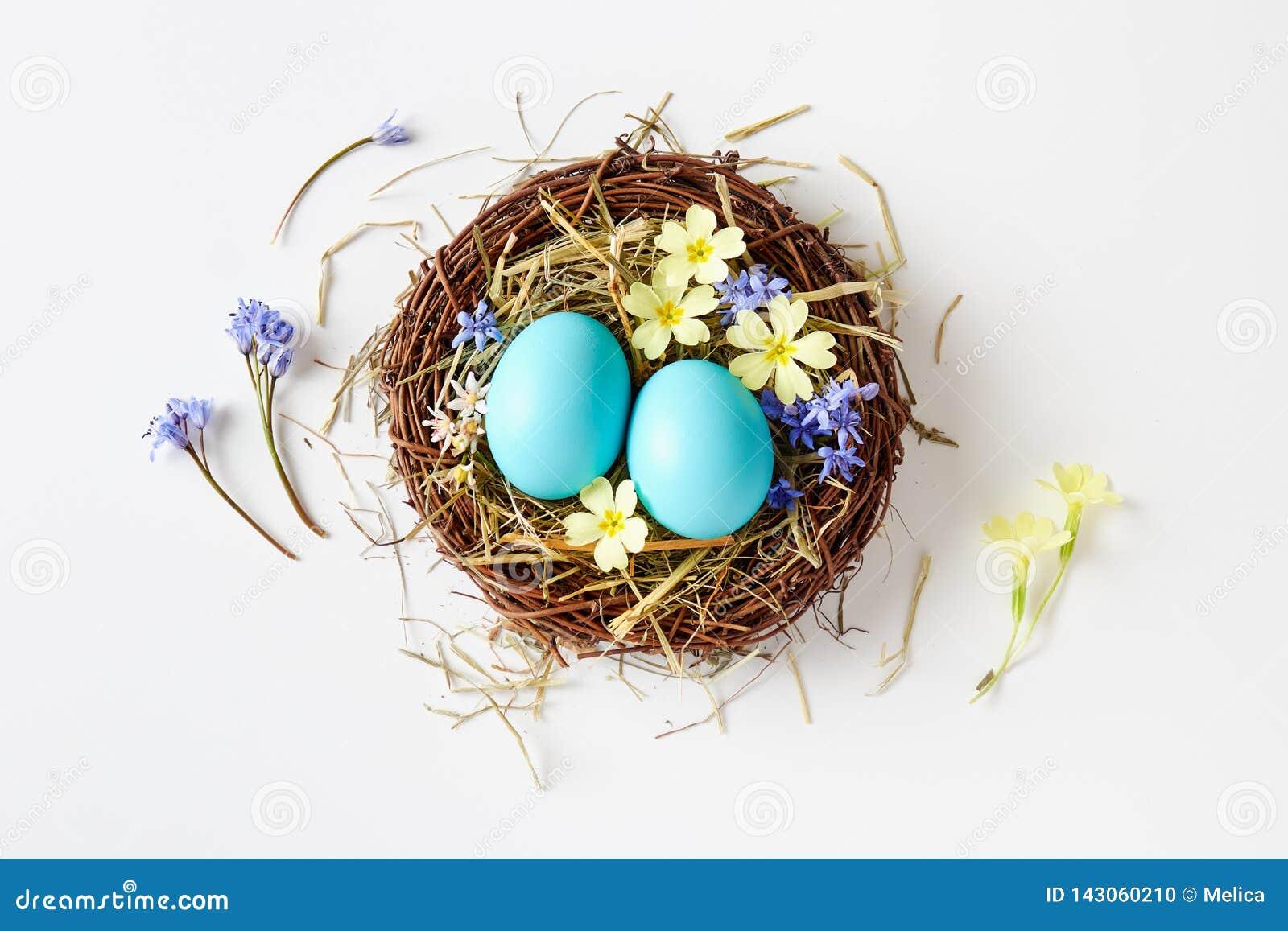 Wielkanocna dekoracja z gniazdeczkiem, jajkami i wiosną, kwitnie