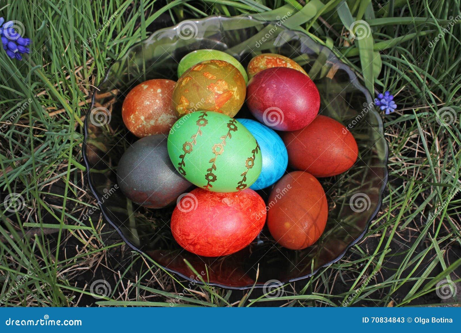 Wielkanocni jajka w trawie na talerzu