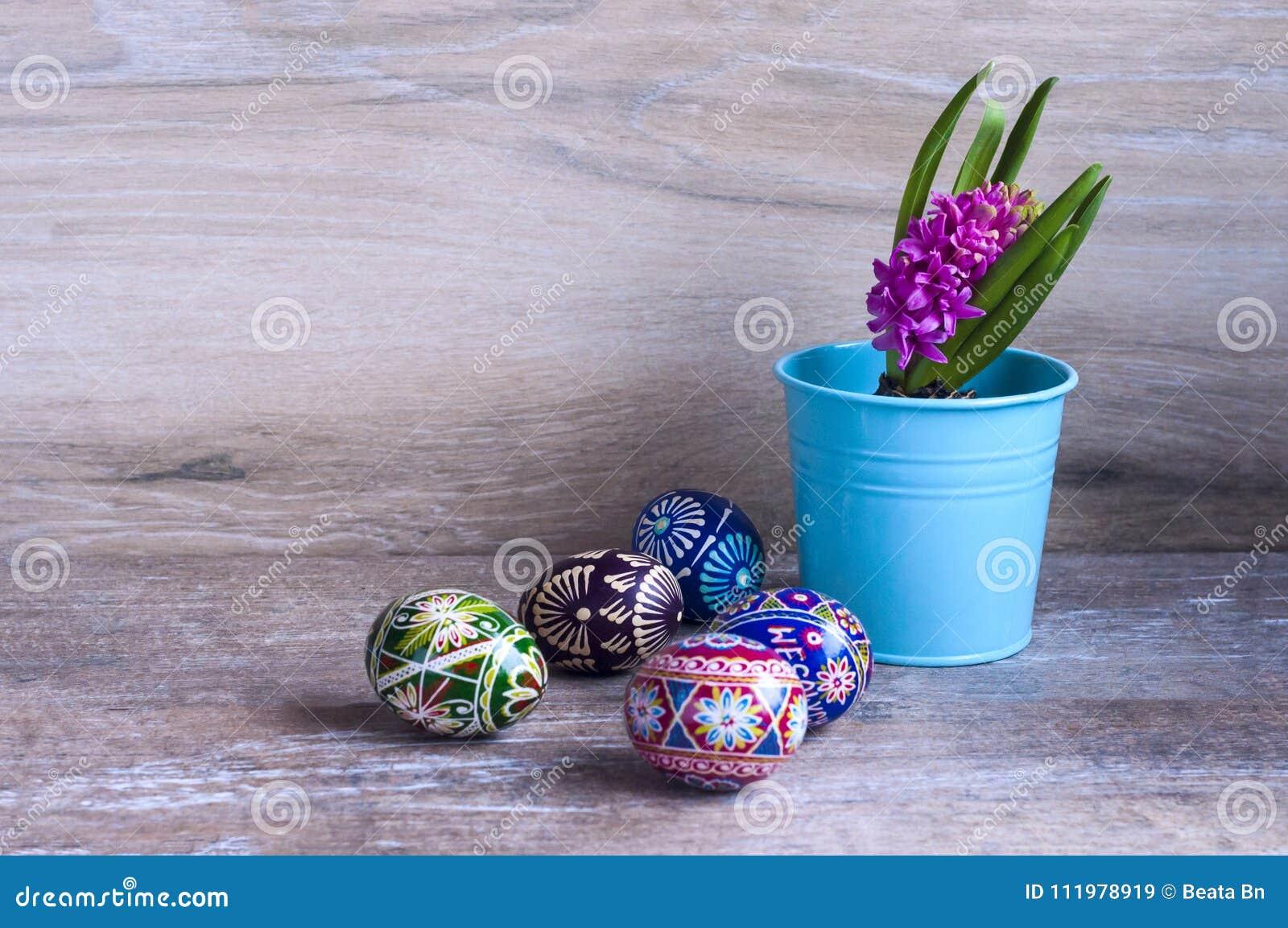 Wielkanocni kolorów jajka, hiacynt i