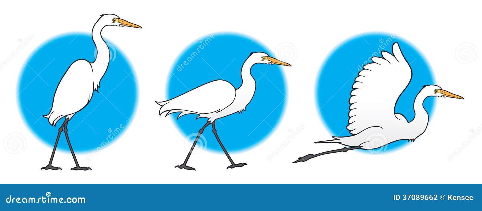 Download Wielki Egret ilustracja wektor. Ilustracja złożonej z piękny - 37089662