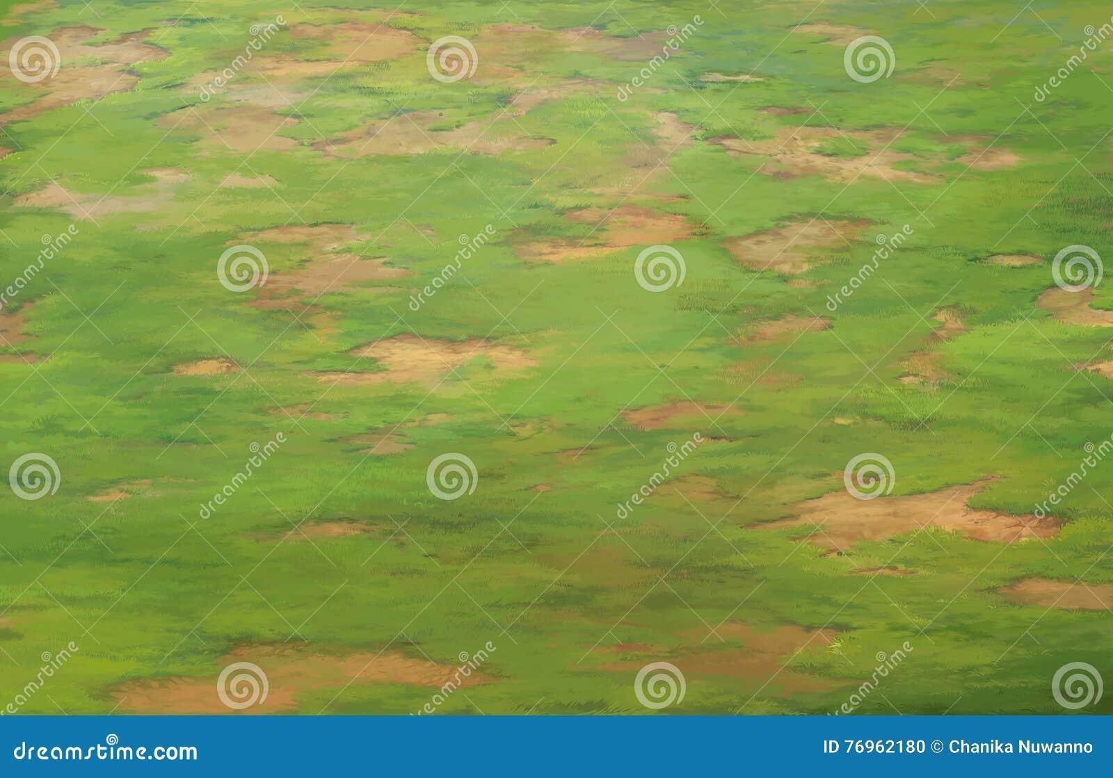 Wielki gazonu teren