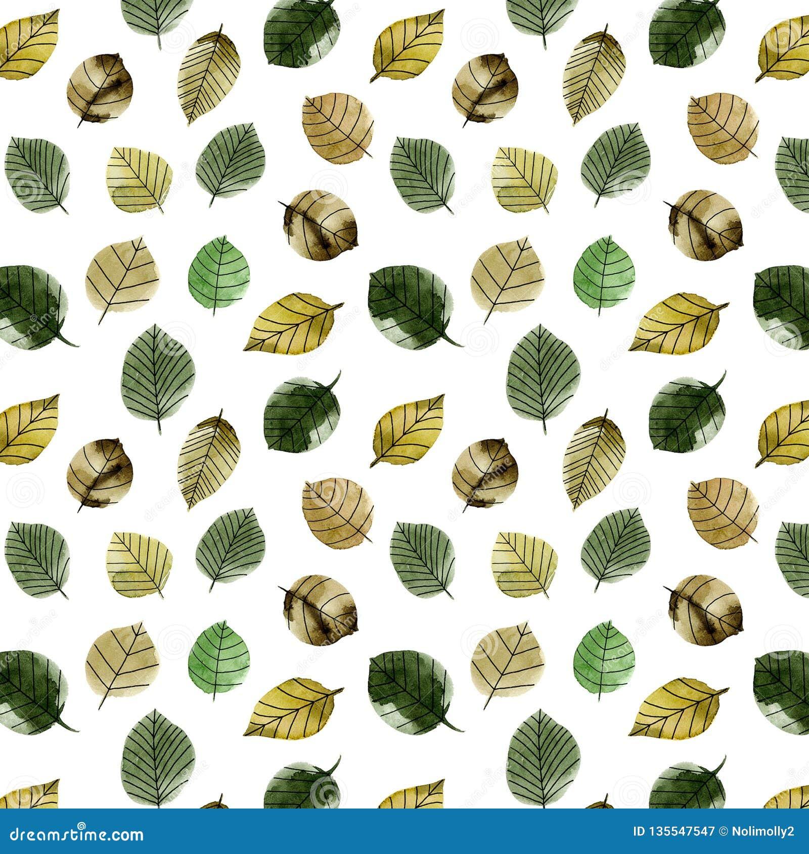 Wielki jesieni akwareli leaveslarge