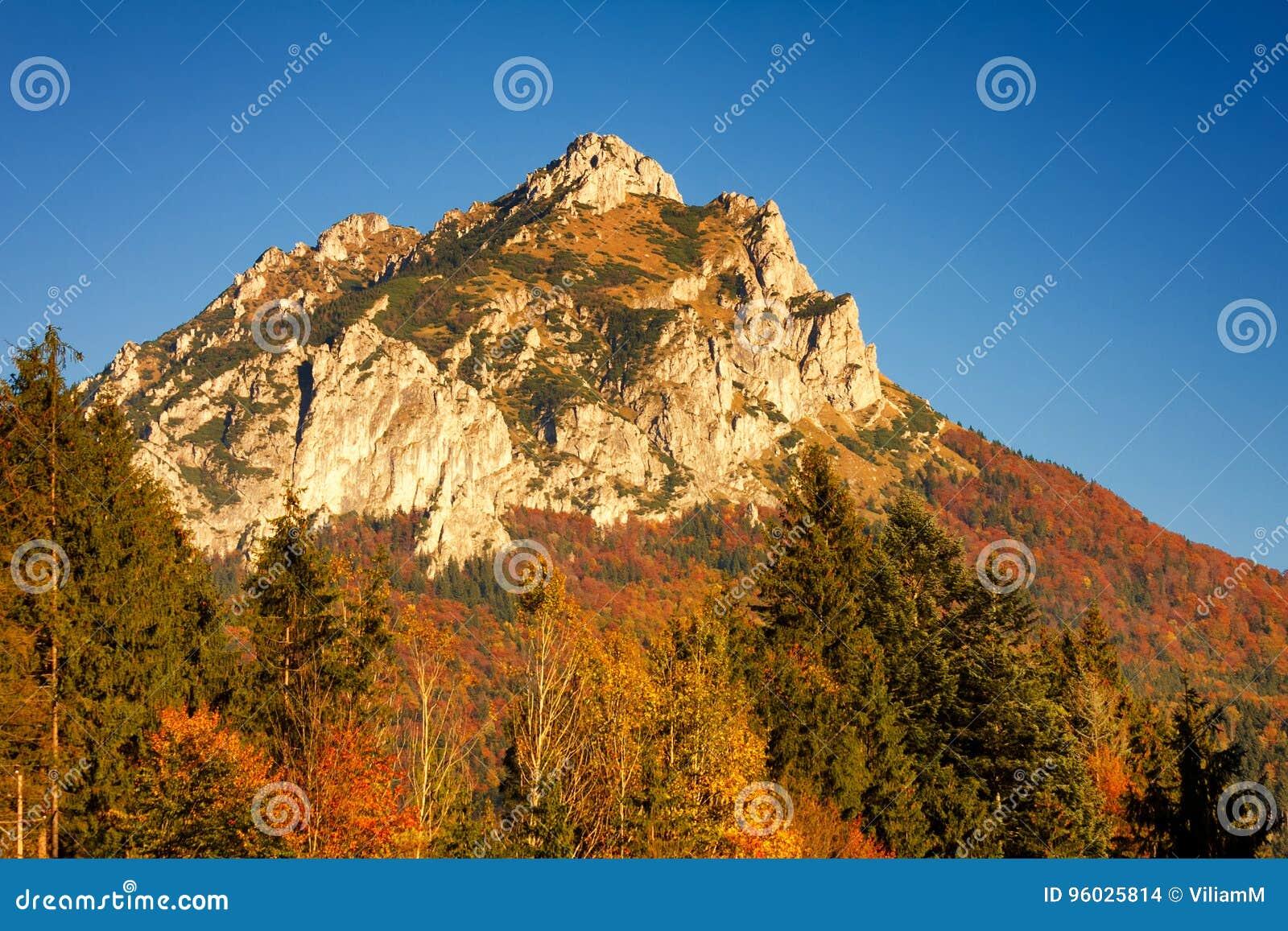 Wielki Rozsutec wzgórze w parku narodowym Mala Fatra
