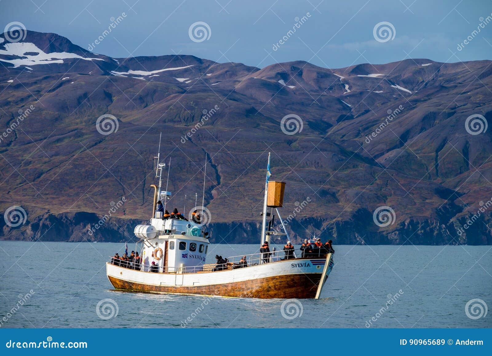 Wielorybia dopatrywanie łódź w Husavik