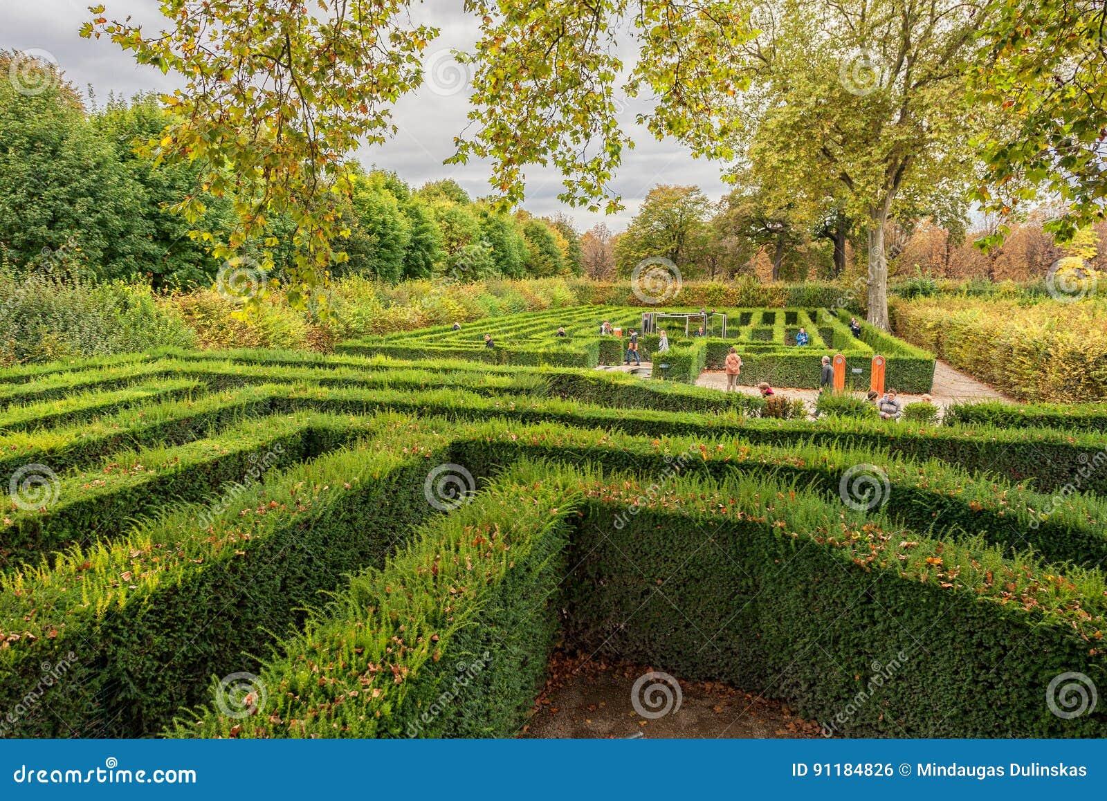 WIEN, ÖSTERREICH - 8. OKTOBER 2016: Palast und Garten Schonbrunn in Wien mit Park Besichtigungs-Gegenstand in Wien, Österreich La