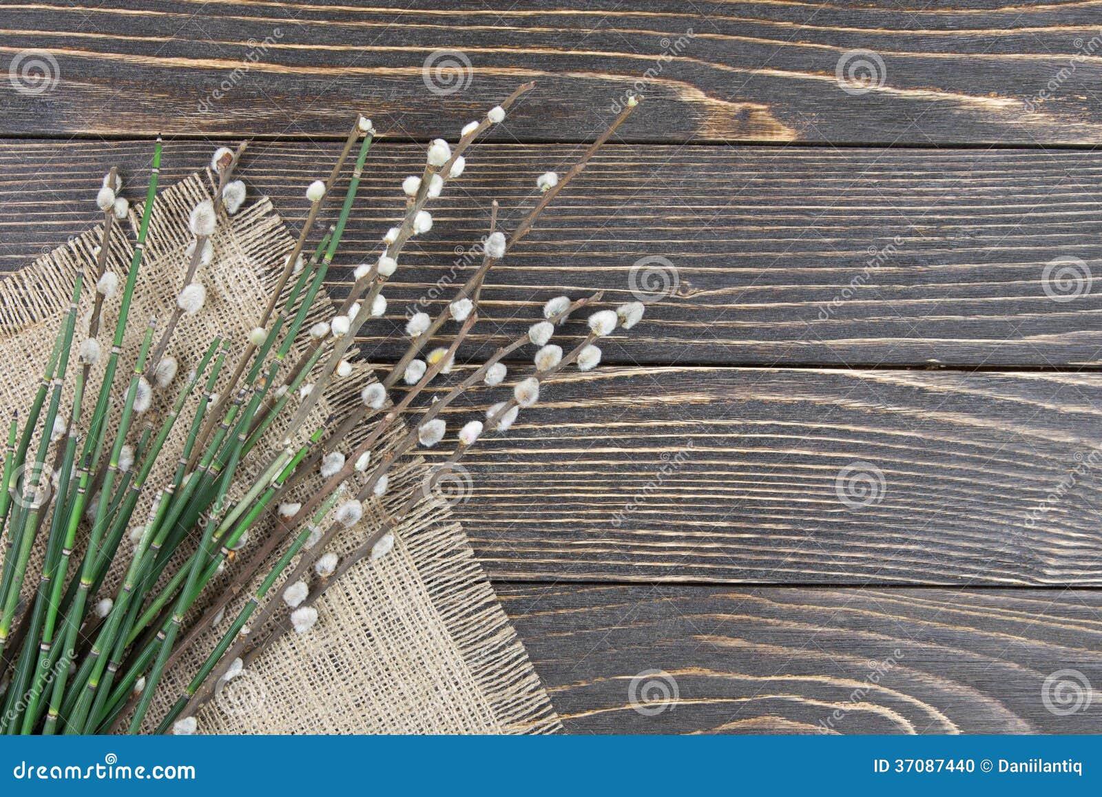Download Wierzby gałąź z baziami zdjęcie stock. Obraz złożonej z gałąź - 37087440