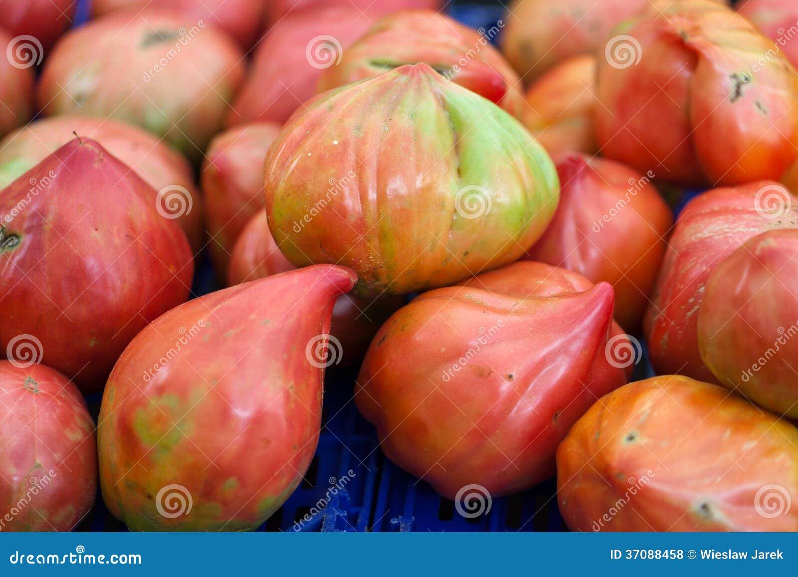 Download Świezi pomidory zdjęcie stock. Obraz złożonej z veggie - 37088458