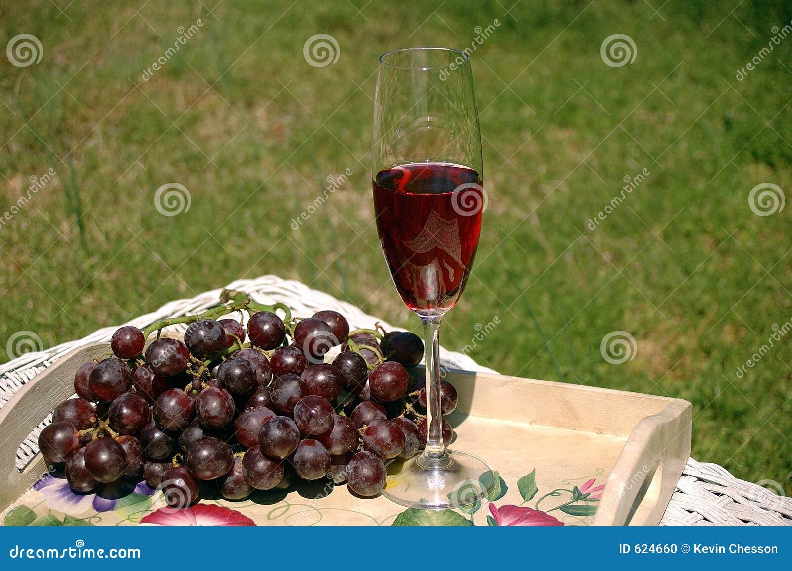 Wijn & Druiven