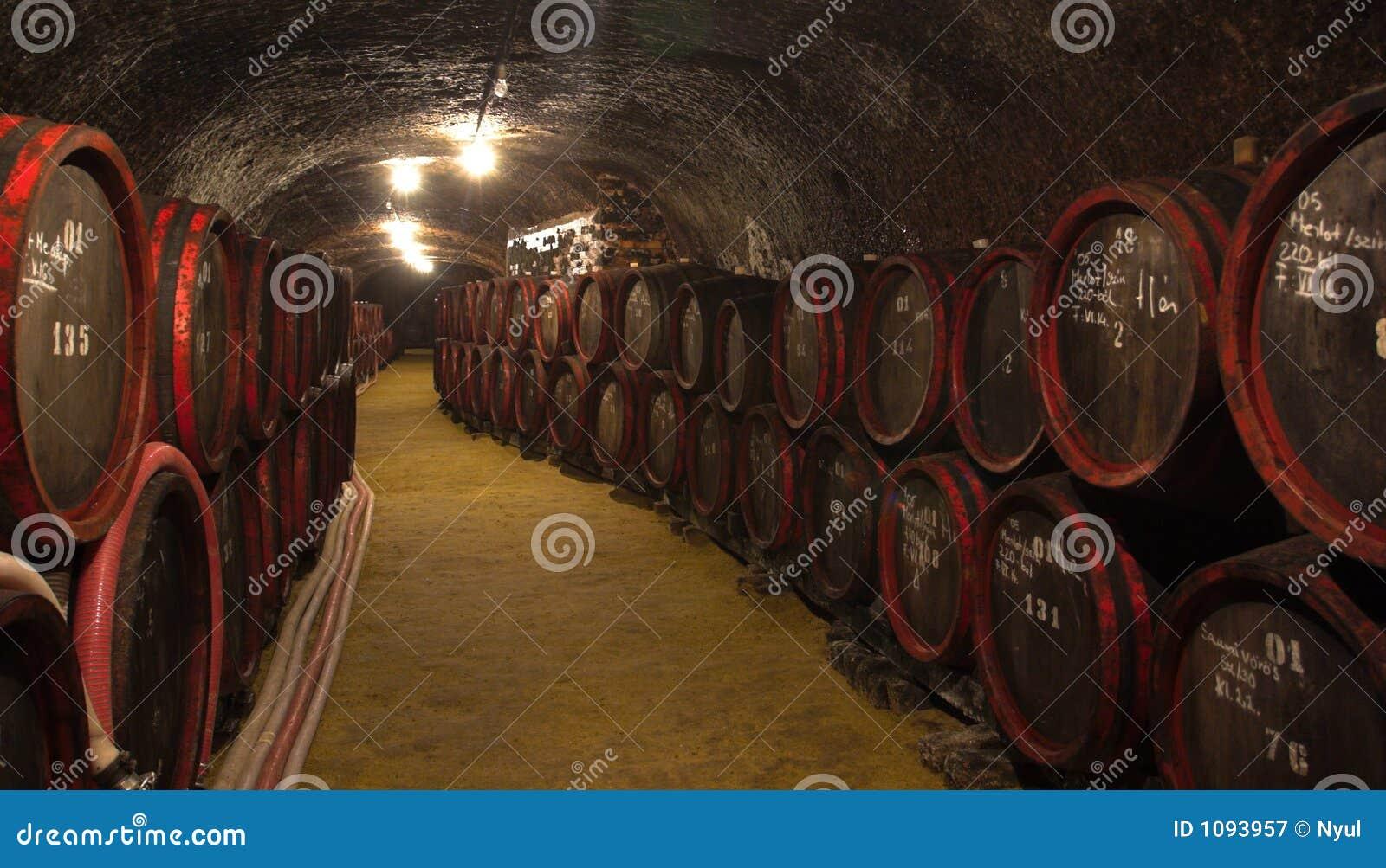 Wijn-kelder
