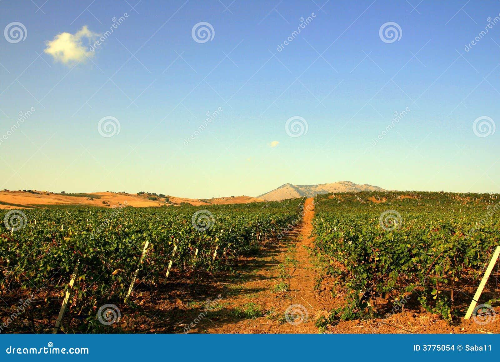 Wijngaarden & Hemel, Sicilië