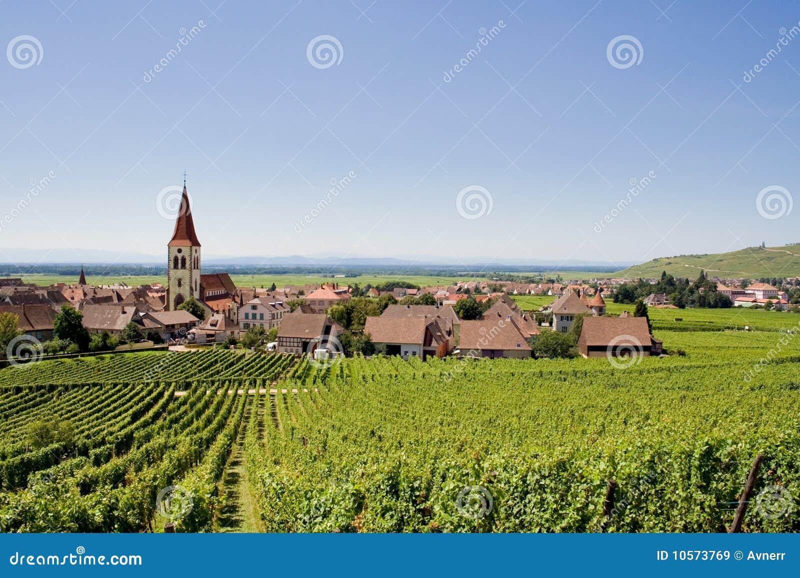 Wijngaarden en dorp