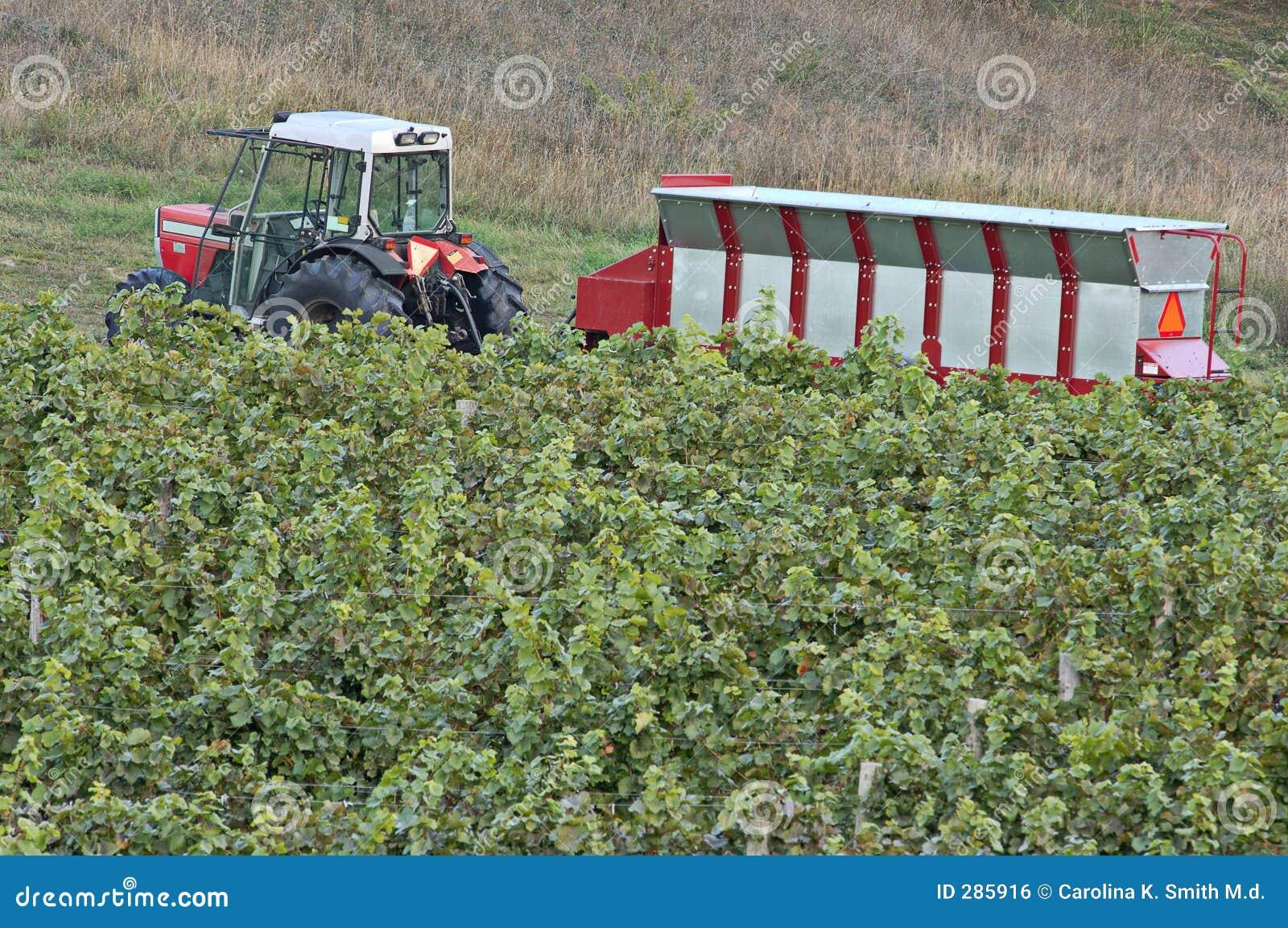 Wijnmakerij-tractor-vultrechter-wijngaard