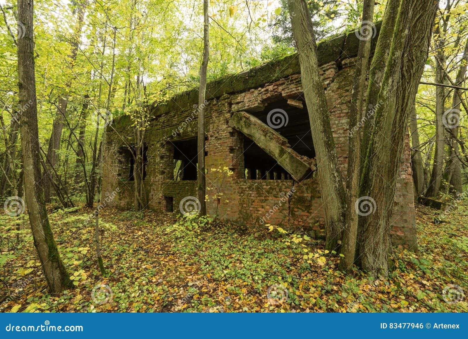 Wilczy ` s Lair, Adolf Hitler ` s bunkier, Polska Pierwszy Wschodnie Frontowe kwatery główne, druga wojna światowa Kompleks dmuch