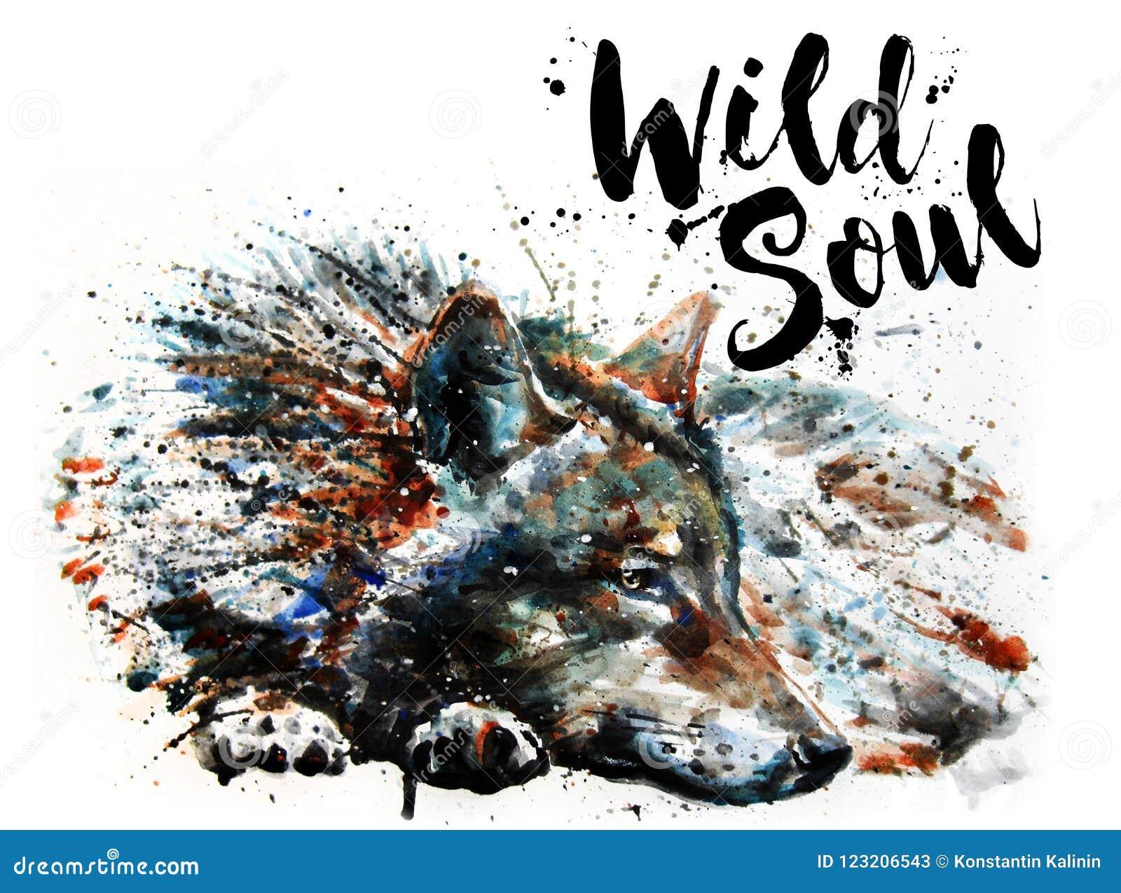 Wilczych akwarela obrazu drapieżnika zwierząt Dzika dusza