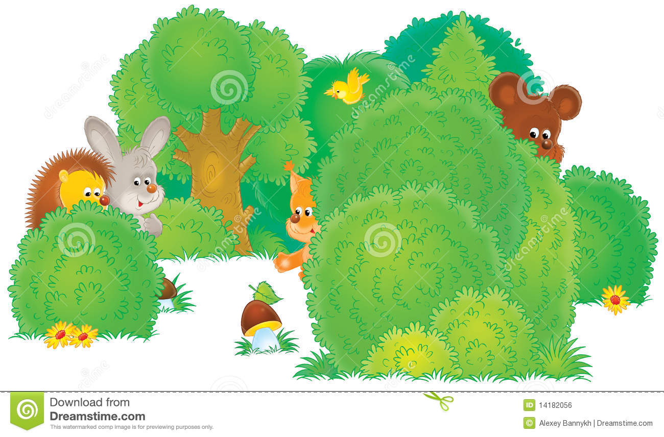 wild animals in a forest royalty free stock image image