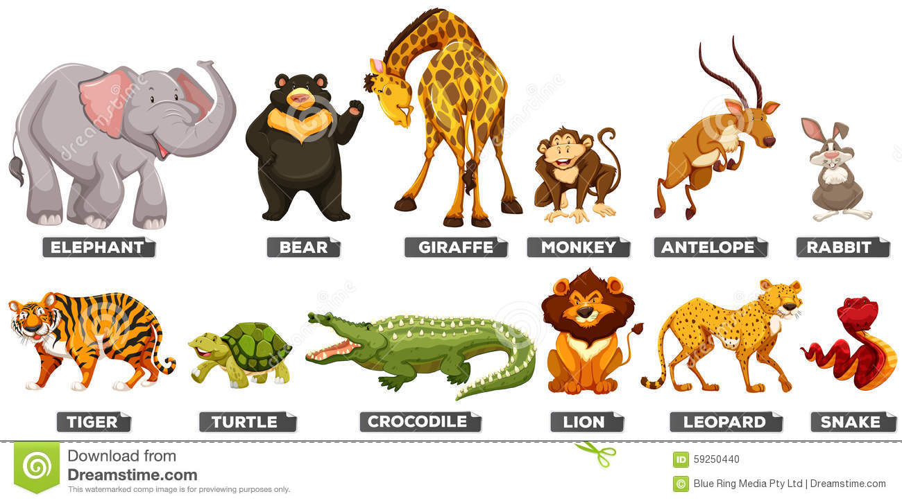wild animals in many types stock vector image 59250440