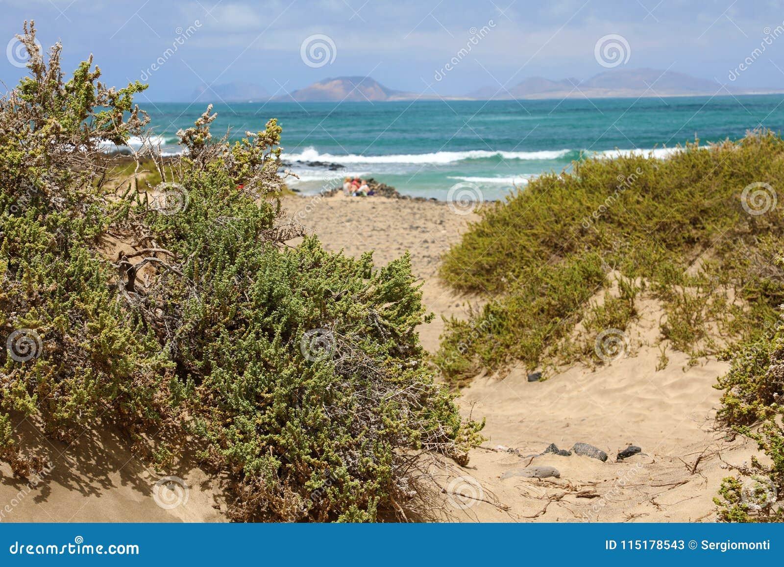 Wild beach in Caleta de Famara, Lanzarote Island, Spain