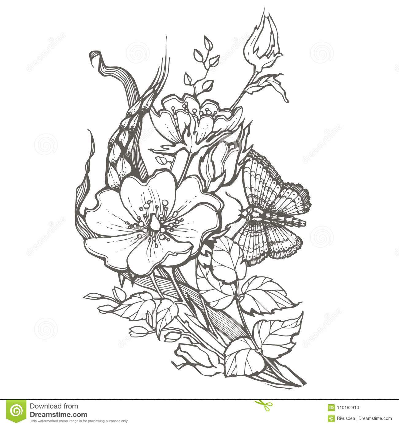 Rose Butterfly Vector Stock Illustrations 5 878 Rose Butterfly Vector Stock Illustrations Vectors Clipart Dreamstime