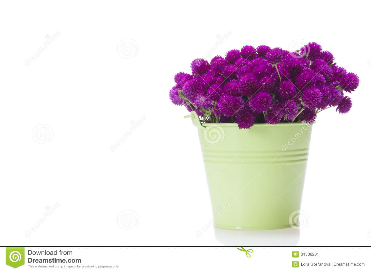 Wild flowers in bucket isolated stock image image 31836201 for Bucket of flowers papercrafting