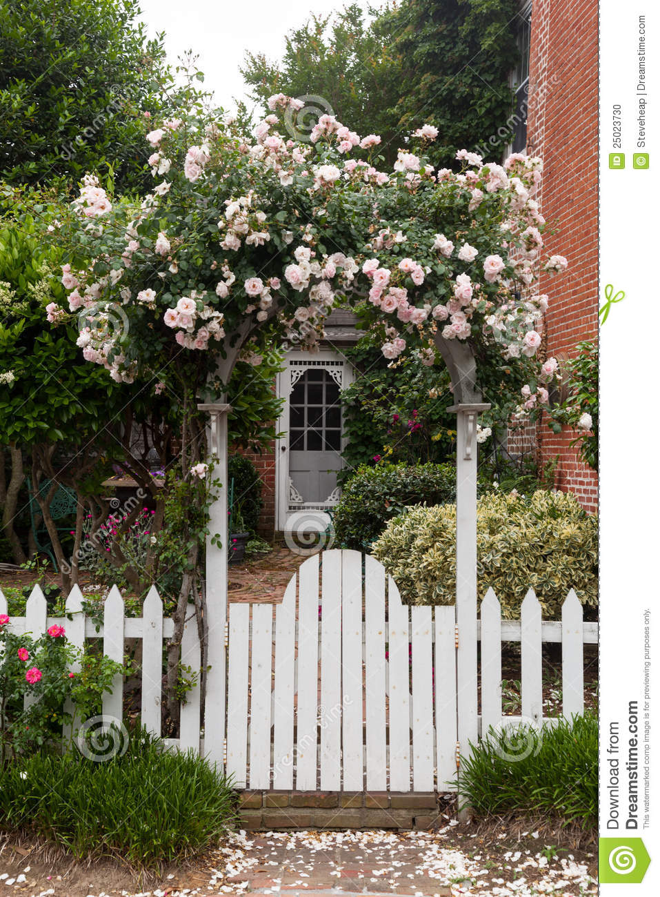 Wild Flowers Growing Over White Picket Fence Stock Photo