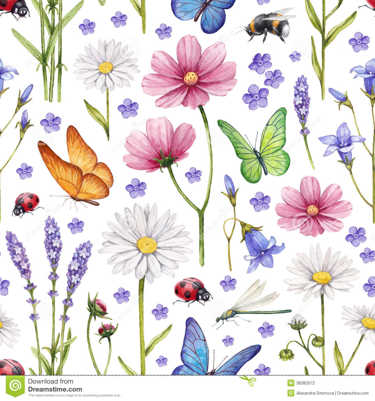 Wild flowers and insects illustration