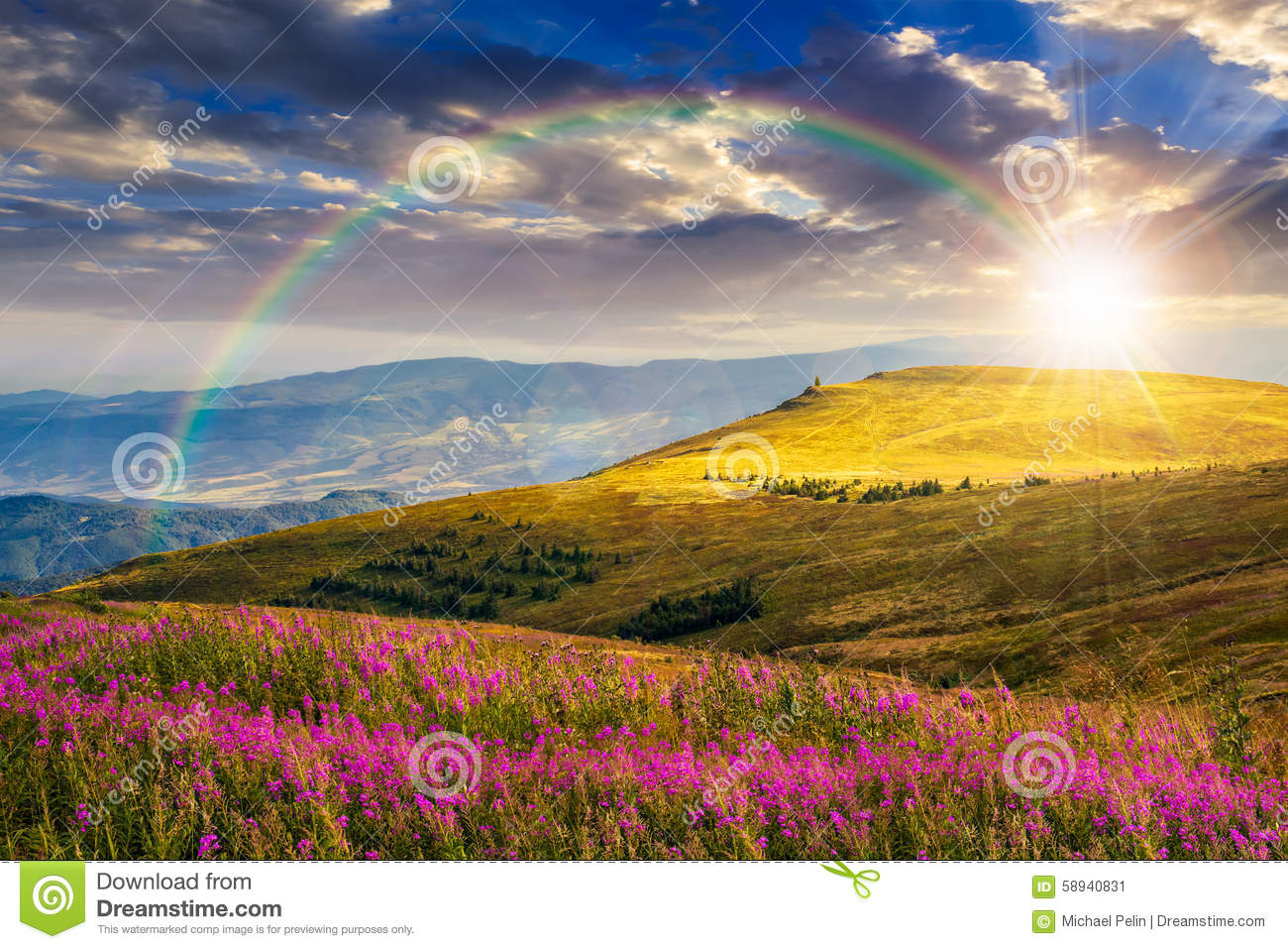 Spring Mountain Landscape Flowers Purple Colored Hills: Wild Flowers On The Mountain Hill At Sunset Stock Image