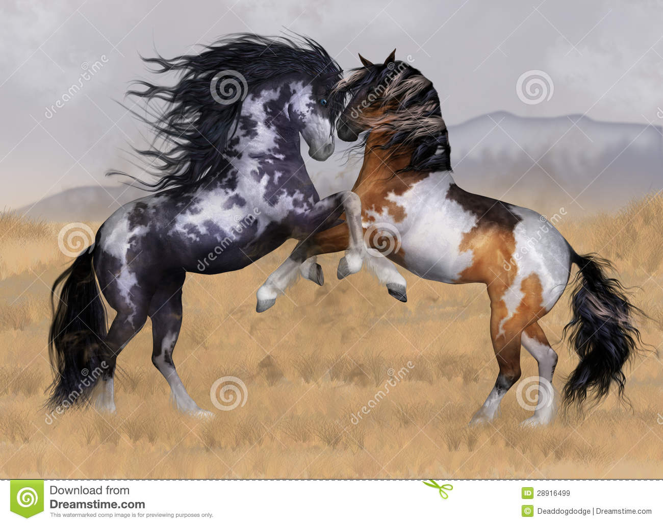 Royalty Free Stock Images: Wild And Free Two Stallions Fantasy Horse ...