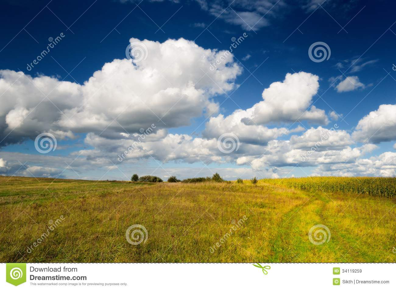 Wild Grass Field In Autumn Royalty Free Stock Images ...